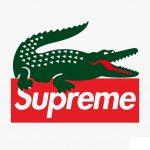 Supreme  × LACOSTE コラボアイテムのビジュアルが公開